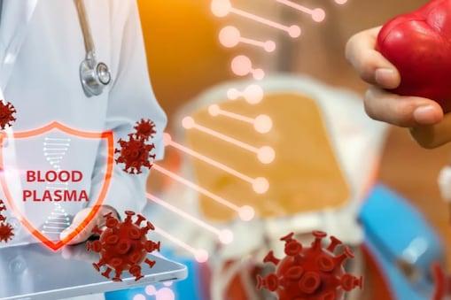 स्टडी का दावा, प्लामा थैरेपी से इलाज करा चुके कोविड मरीजों की हुई ज्यादा मौत