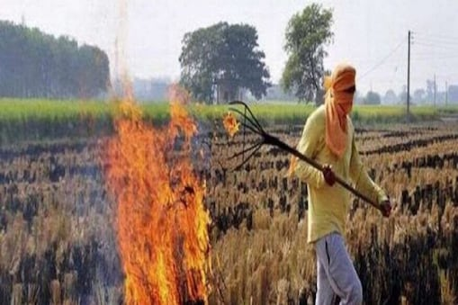 पराली पर क्यों चुप हैं राजनीतिक दल, क्या फिर गैस चैंबर में बदलेगी दिल्ली?