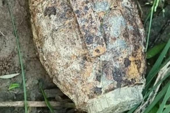 Agra News: चरवाहे को जंगल में मिला जिंदा हैंड ग्रेनेड, मचा हड़कंप, पुलिस ने इलाके को किया सील