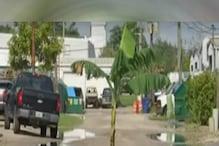 Weird: सड़क के बीचोंबीच लगा हुआ है केले का पेड़, पीछे की वजह है काफी दिलचस्प