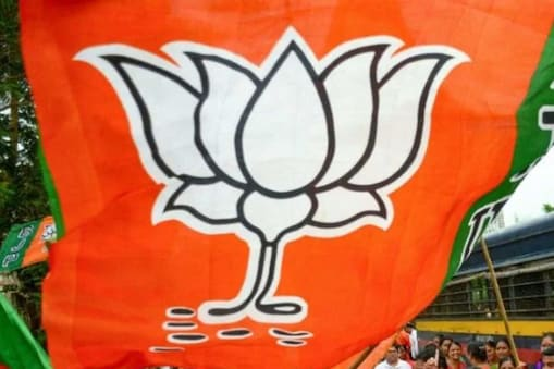 विधानसभा चुनाव से पहले बीजेपी ने लाख डेढ़ करोड़ नए सदस्य बनाने का लक्ष्य