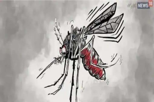 मच्छर जनित बीमारी के मामले आम तौर पर जुलाई से नवंबर के बीच सामने आते हैं लेकिन यह मामले मध्य दिसंबर तक भी आ सकते हैं. (सांकेतिक फोटो)