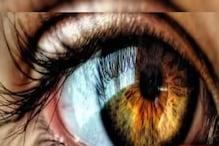 Surprising: आंख की पुतलियां घटा-बढ़ा लेता है छात्र, टैलेंट देख वैज्ञानिक चकित