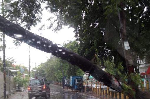 UP: भारी बारिश के चलते लखनऊ के गोमतीनगर में बीच सड़क पर गिरा पेड़.