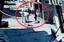 BJP नेता की भतीजी को गाय ने उठाकर पटका, बचाने आए लोगों पर भी किया हमला