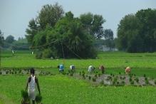 किसानों के खाते में जल्द ही आएंगे 2000 रुपये, यहां जानिए सबकुछ