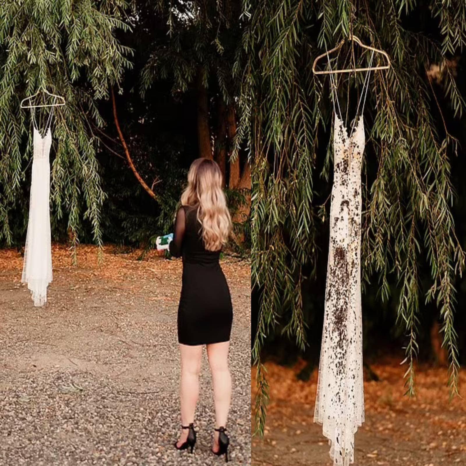 Un Engagement Photoshoot के नाम से उन्होंने इस शूट को ब्रांड किया था. मेटा ने ब्लैक ड्रेस में सजकर अपनी इंगेजमेंट ड्रेस को टांगा और उसे काले पेंट से स्प्रे कर डाला. पेशे से डेंटल हाइजीनिस्ट मेटा ने इसे दिल तोड़ देने वाले हालात में सशक्तीकरण का नाम दिया है.