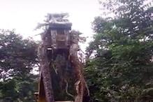 जंगल में मिला डायनासोर से भी बड़ा सांप! उठाने के लिए मंगवाना पड़ा बुलडोजर