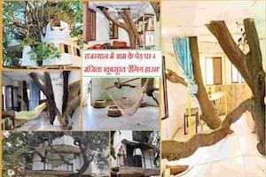 Rajasthan में 40 फीट ऊंचे आम के पेड़ पर 4 मंजिला हाईटेक मकान, रिमोट से चलती हैं सीढ़ियां, देखें PHOTOS