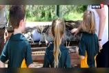 Watch: Croc Shock For School Kids