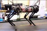Watch: Cheetah 3, Miracle Robot