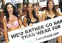 <a href='http://www.ibnlive.com/photogallery/488-0.html'>In Pics: Models un'fur'l their agenda, strip for a cause</i></a>