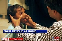 Doctors say you can treat dengue at home now