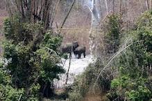 Nagarhole Tiger Reserve smoulders, but who cares?