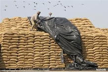 Congress eager for Food Security ordinance, grains rotting in many states