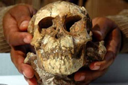 Humans arrived in the Americas from Asia much earlier, claims study