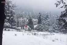 Shimla: Manali, Kufri gets more snow