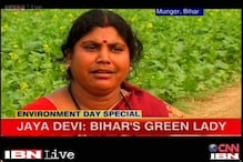 World Environment Day: Meet the 'green lady' of Bihar