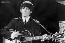 Beetles killed a Beatle: a tree planted in honour of former Beatle George Harrison has been killed by beetle infestation