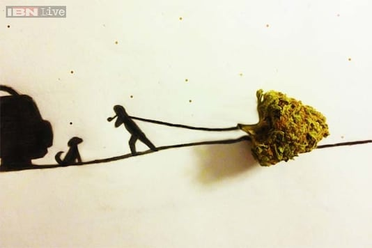 Photos: This person's creative drawings of a man and a dog around a clump of marijuana have given the Internet quite a high
