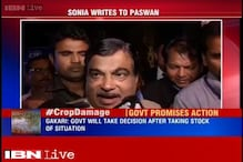 Rain damaged crops: Government will take decision after stock of situation, says Gadkari