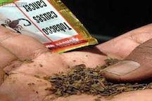 Study warns of increase in manufacture of chewing tobacco items