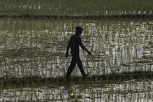 Erratic monsoon poses major challenge in saving standing crop