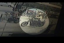 Harley theft a result of youth looking for instant gratification for everything, says psychologist
