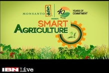 Smart Agriculture: Bt gene Cotton crops more potent against poll warms used for agriculture