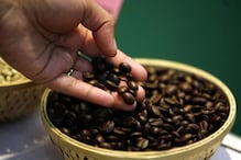 5 Cups Of Coffee Daily May Keep Liver Cancer At Bay