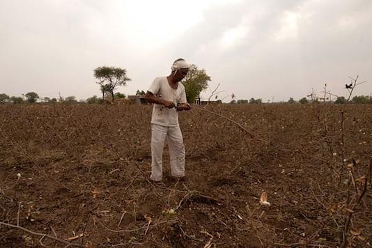 File image of a farmer in Marathawada (News18)