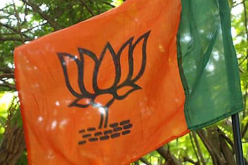 File photo of BJP flag.
