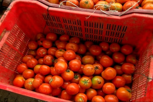 Gorge On Tomatoes For Healthy Acne-Free Skin