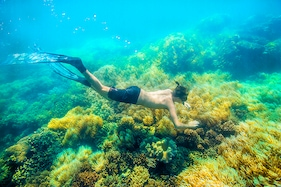 Top 10 Things to do in Andaman and Explore it Like a Local