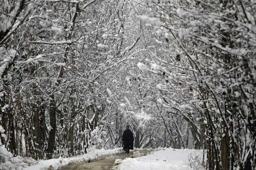 Power Outages Plunge Kashmir Valley Into Darkness After First November Snowfall Since 2009