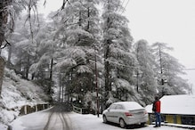Snowfall Brings Cheers to Hoteliers in Shimla, Manali
