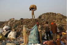 Economic Survey Plans $1 Billion Worth Gold, 14 Lakh Jobs Via Waste Management