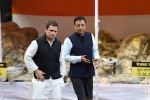 In Jind Prestige Battle, Surjewala Said 'Yes Boss' to Rahul as Other Congress Leaders Backed Out