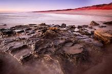 Bigfoot Found: Giant Dinosaur Tracks, Made 95 Million Years Ago, Discovered in Australia