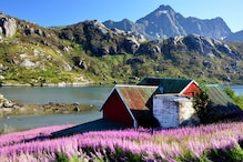 Norway Named Happiest Country In The World'