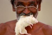 After Skulls, Saris and Rats, Protesting TN Farmers Pick up Modi Masks
