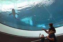 New Frost Museum of Science opens in Miami