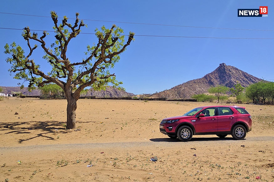 Land Rover Discovery Sport Travelogue - tree