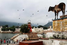 Cow Slaughter Issue Cropped Up in Constituent Assembly Debates