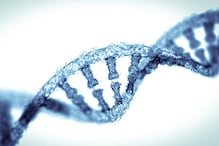 World's First Gene-Altered Babies May Die at Young Age: Study