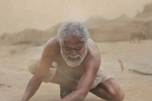 Kadvi Hawa Review: A Compelling Portrait Of the Human Cost of Climate Change