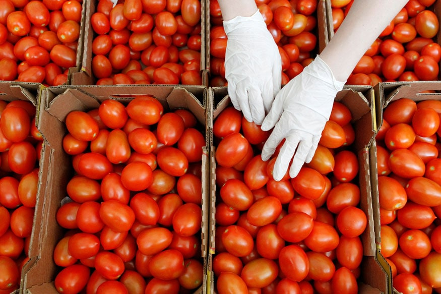 Tomato Prices Continue to Rule High at Rs 60-80/kg in Delhi Despite Govts Puree