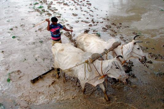 Image for representation. (Photo: Reuters/Jitendra Prakash)