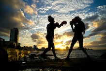 Boxers, MMA Fighters Show Distinct Brain Injury Patterns