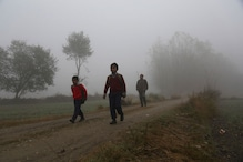 Schools in UP, Bihar Shut After Cold Wave Grips North India